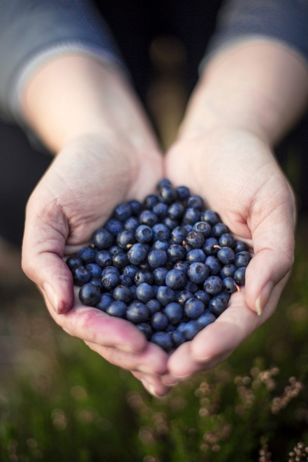 Blueberries from Finland - via Woolenberry